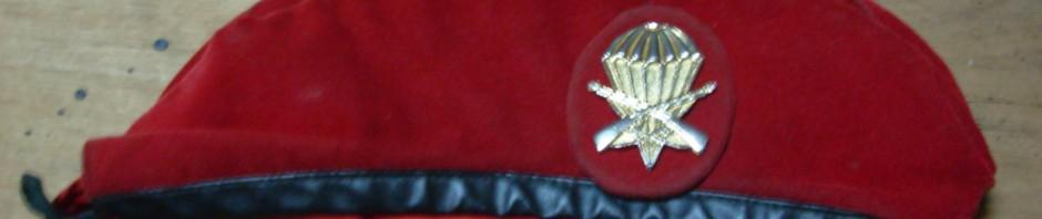 Modernización Militar Argentina Inicia 2012